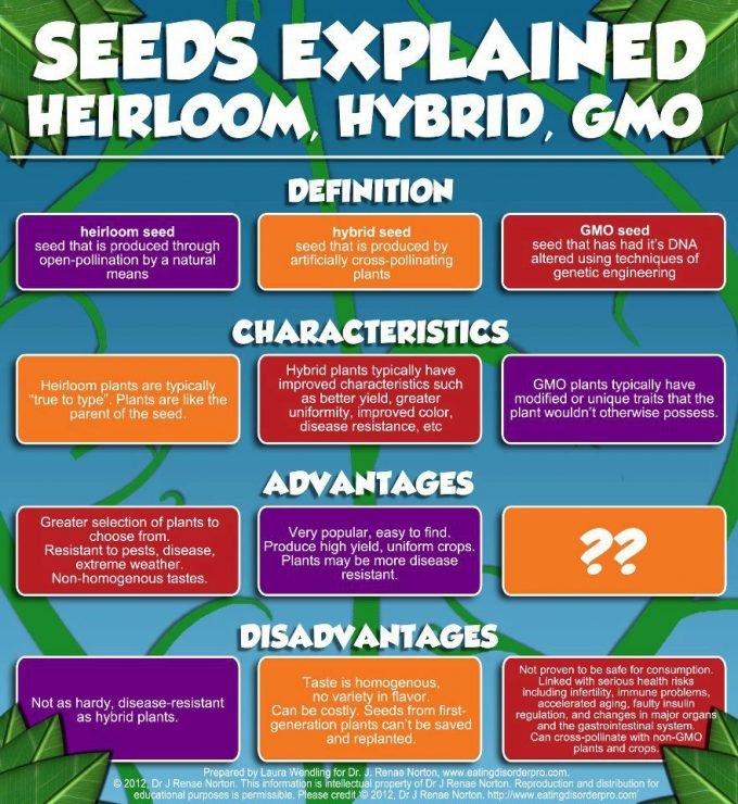 FB-GMO definitions