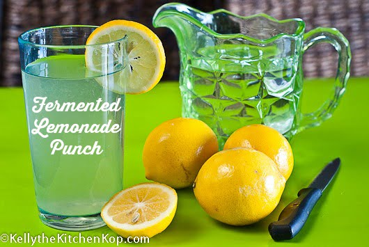 fermented-lemonade-punch