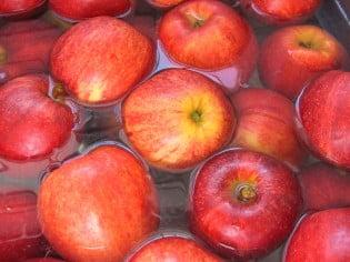 applesauce3
