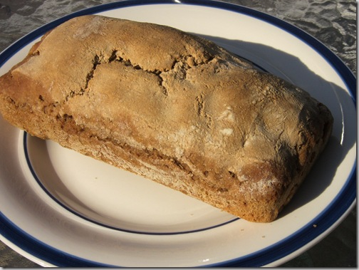 GMO Bread Yeast