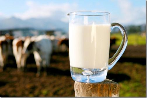 ways to use up raw milk