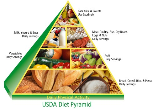 What is Wrong With Our Current Food Pyramid? - Kelly the Kitchen Kop