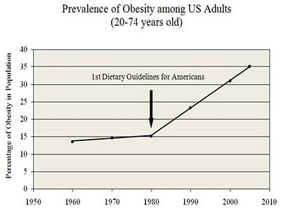 Who is to blame for obesity?
