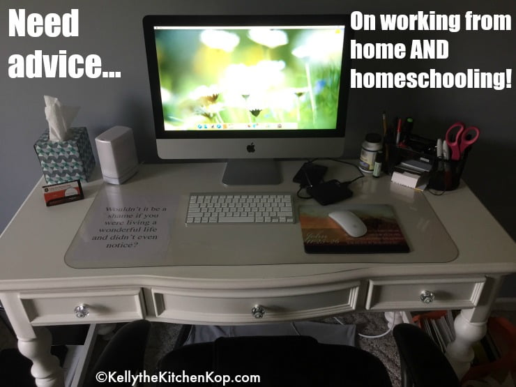 Homeschool AND work at home