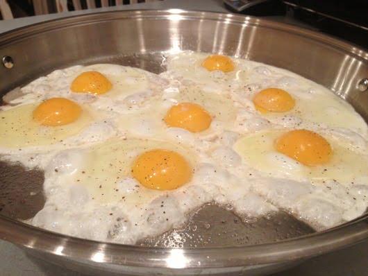 eggs benedict eggs