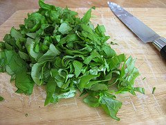 How to Freeze Fresh Basil chopped