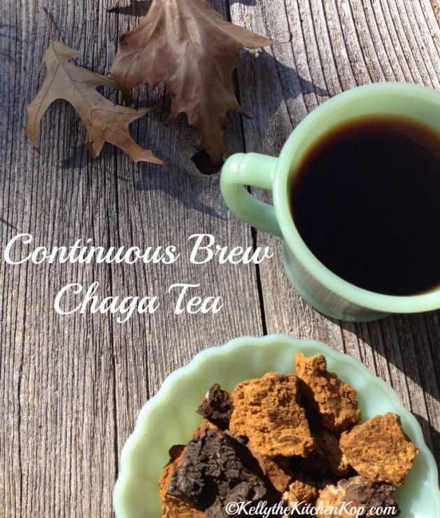 Health Benefits of Chaga Mushroom Tea