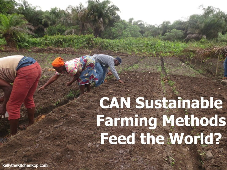 CAN Sustainable Farming Methods Feed the World