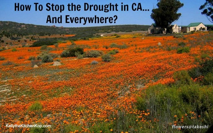How to Stop the Drought in California