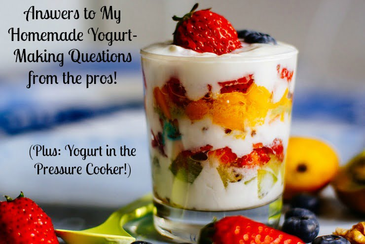 Yogurt in the Pressure Cooker