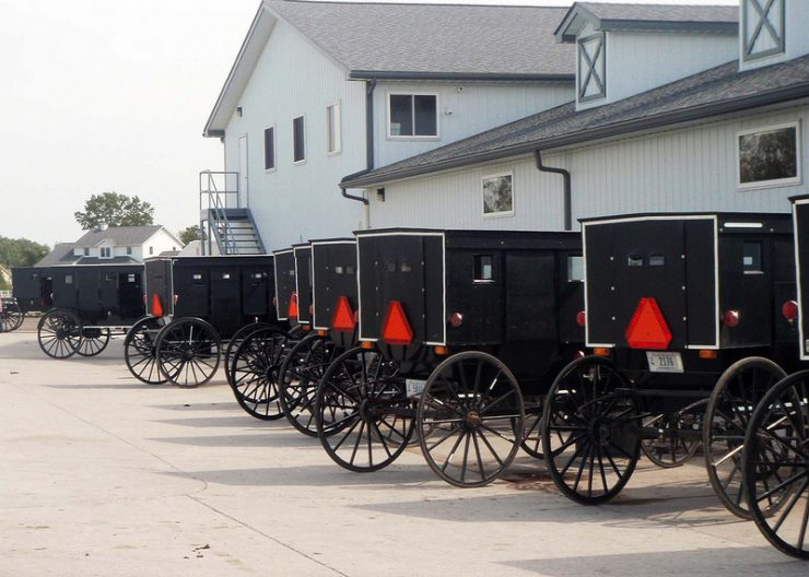 Amish Father of 12 Thrown in Jail